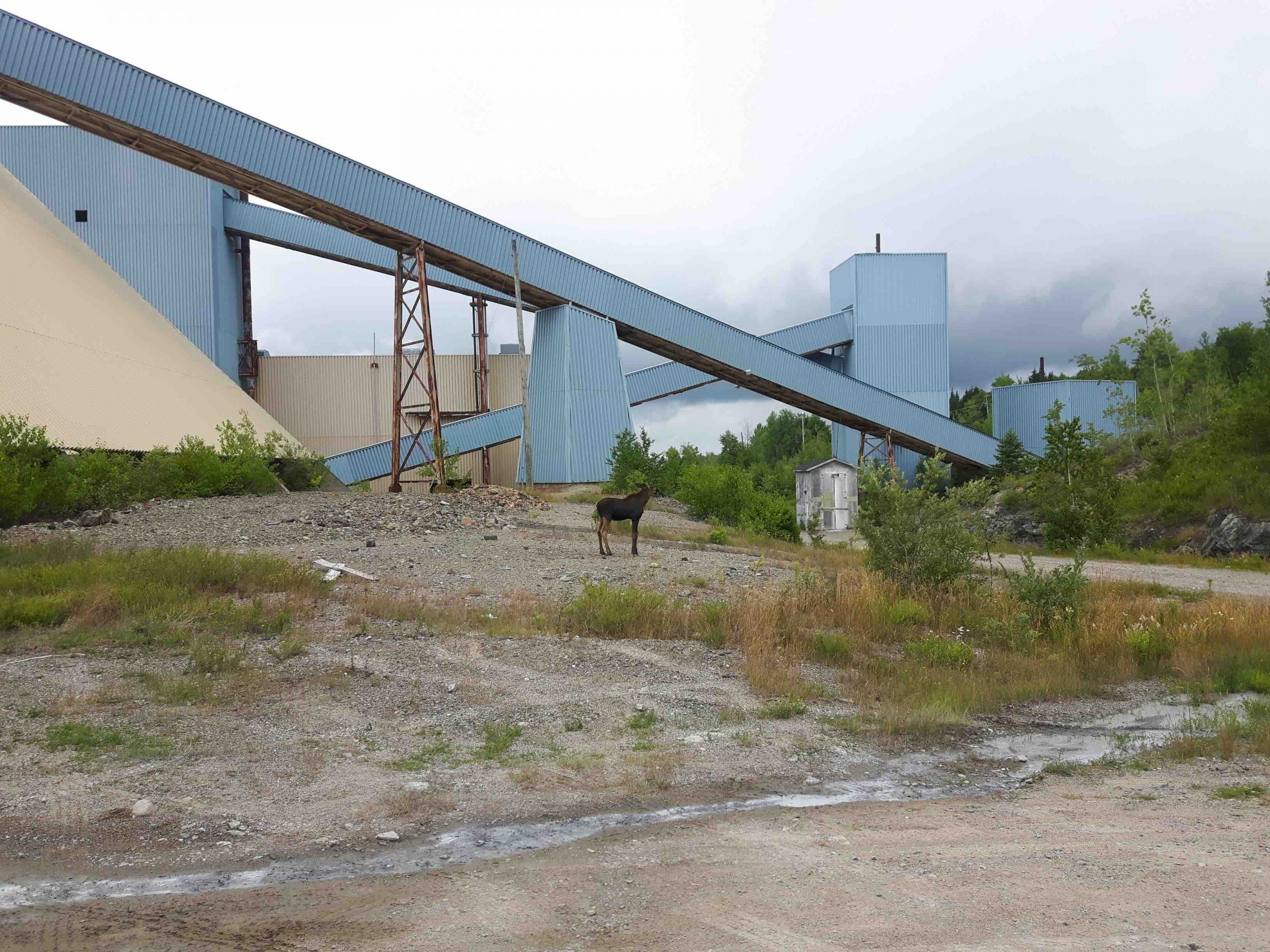 Galway Metals Home Page Image